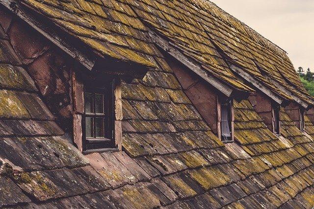 Comment prévenir les moisissures sur le toit?