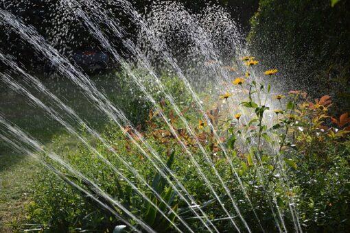 Choisir un bon système d'arrosage pour son jardin